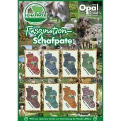 Opal Faszination Schafpate 4-draads ast. 8x5x100g - 1st