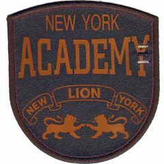 Applicatie New York Academy oranje/blauw - 5st