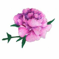 Applicatie Roos roze-paars - 5st