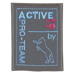 HKM Applicatie pro team active - 5st