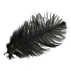 Pieten veren circa 22cm - 10st