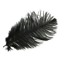 Pieten veren circa 30cm - 10st