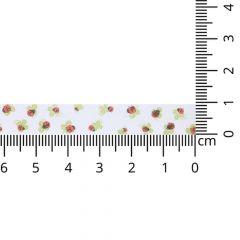 DMC Biaisband lieveheersbeestjes - 3x3m