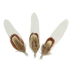 Losse fazant en ganzenveren met ring 8-10cm - 3x25st
