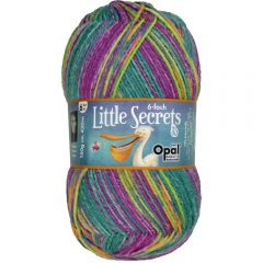 Opal Little Secrets 6-draads 8x150g