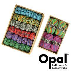 Opal Regenwald assortiment 5x100g - 8 kleuren - 1st