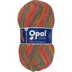 Opal Cotton Premium 2020 4-draads 8x100g