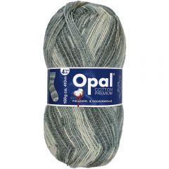 Opal Cotton Premium 2020 4-draads 8x100g - 9847