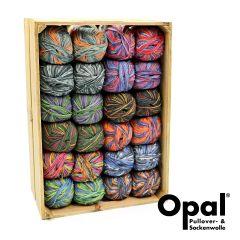 Opal Assortiment 4-draads 2x100g - 12 kleuren - 1st